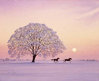A Winter's Evening Fine Art Print
