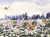 Wild Flowers & Butterflies Fine Art Print