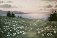 Sunlight Fine Art Print