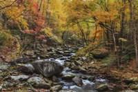 Tremont Stream Watercolor Fine Art Print