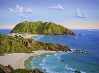Point Sur, CA Fine Art Print