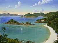 Trunk Bay - Virgin Islands Fine Art Print