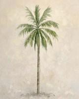 Palm Tree 1 Fine Art Print