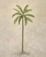 Palm Tree 2 Fine Art Print