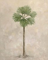 Palm Tree 3 Fine Art Print
