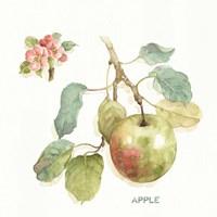 Orchard Bloom I Fine Art Print