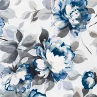 Scent of Roses Indigo II Fine Art Print