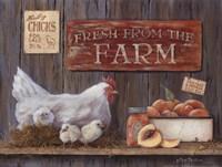 Fresh From The Farm Fine Art Print