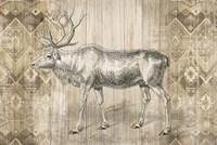 Natural History Lodge IX Fine Art Print