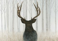 Into the Forest Fine Art Print
