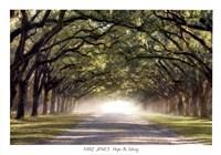 Hope And Glory Fine Art Print