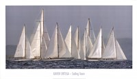 Sailing Team Fine Art Print