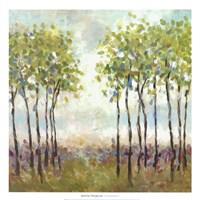 Foxwood I Fine Art Print