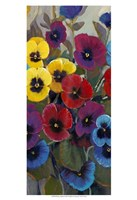 Pansy Panel II Fine Art Print