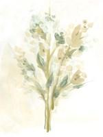 Sagebrush Bouquet I Framed Print