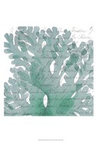 Aqua Marine III Fine Art Print