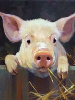 Farm Club I Fine Art Print