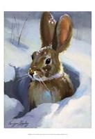 Snow Bunny Fine Art Print
