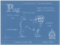 Blueprint Pug Fine Art Print