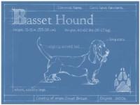 Blueprint Basset Hound Fine Art Print