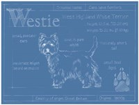 Blueprint Westie Framed Print
