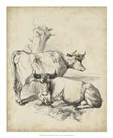 Pastoral Sketch III Fine Art Print
