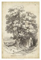 Noble Tree II Fine Art Print
