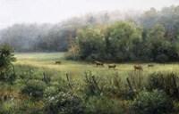 Vermont Pasture Fine Art Print