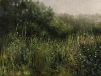 Dorset Wildflowers 3 Fine Art Print