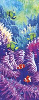 Coral Reef Fine Art Print