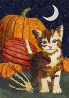 Calico Kitten & Pumpkins Fine Art Print