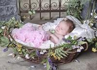 Sleeping Baby Fine Art Print