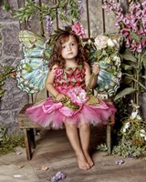 Beautiful Fairy 2 Fine Art Print