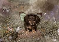 Fairy Dog Fine Art Print