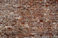 Brick Wall Splattered with White Fine Art Print