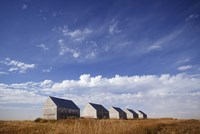 Abandoned Sheds in a Wheat Field Fine Art Print