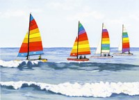 Sail Colors Fine Art Print