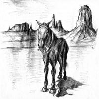Lonely Mule Fine Art Print