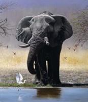 Elephant, Egret And Carmines Fine Art Print