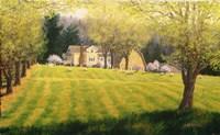 Spring Pastures Fine Art Print