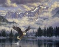 Majestic Fisherman Fine Art Print
