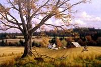 Crisp Fall Day Fine Art Print