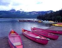 Four Pink Boats, Canadian Rockies 06 Fine Art Print