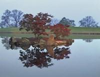 Reflections #2, Hocking Hills, Ohio 92 Fine Art Print