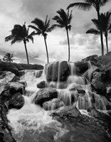 Hawaiian Falls, Big Island Fine Art Print