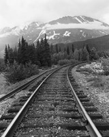 Railroad Tracks, Alaska 85 Fine Art Print