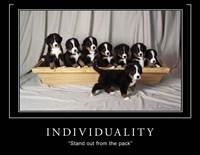 Individuality Motivational Fine Art Print