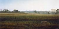 Autumn Fields - Red Fox Fine Art Print
