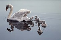 Following Mama Fine Art Print