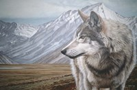 Distant Mountains Fine Art Print